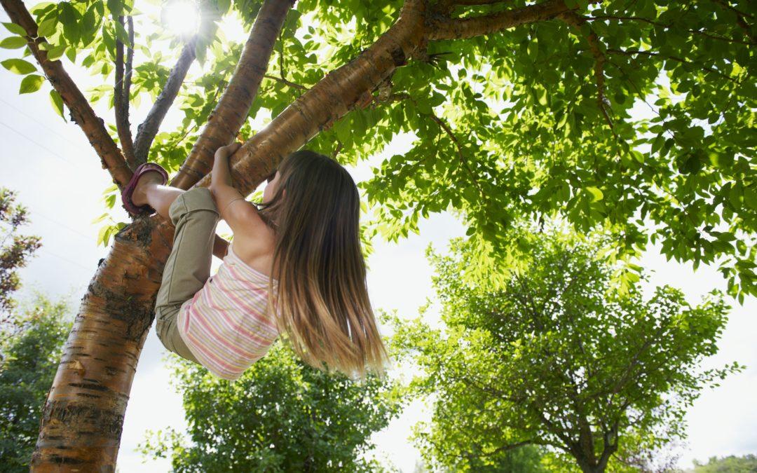 Subsidie 'Lekker naar Buiten!' voor Kinderopvang